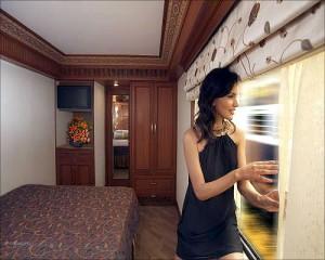 王公快车(Maharajas' Express)上的一名女乘客