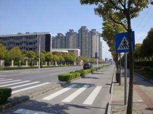 印度人看中国高速公路:人车各行其道