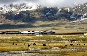 印度人看中国青藏铁路:青藏铁路