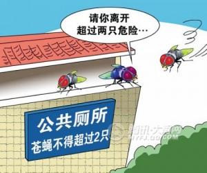 公厕数苍蝇,北京规定公厕苍蝇不超2只,两只苍蝇,苍蝇标准