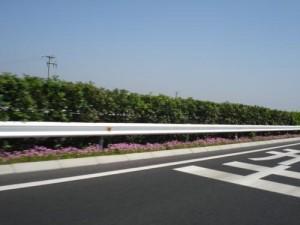 印度人看中国高速公路