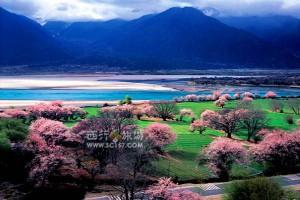 """中国拟在西藏林芝地区打造""""黄金""""旅游度假区"""