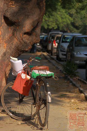 德里洛提聚居区街景,老式单车